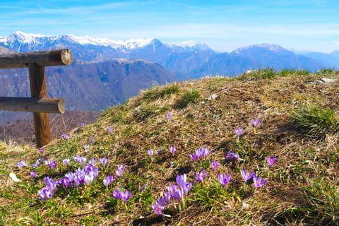 Kolovrat mit Ausblick auf die julischen Alpen