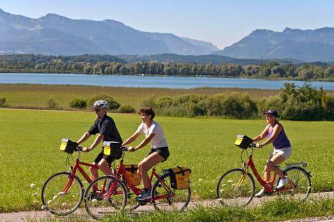 Cyclists on cycle path near Breitenbrunn