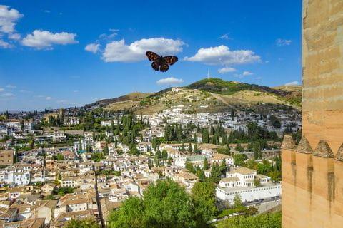 Impressionen Granada