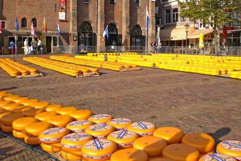 Käse Markt