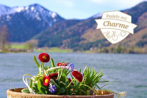 Münchner See, Berge und Blumen