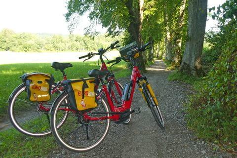 Eurobike E-Bikes im Wald