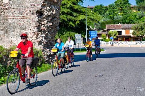 Cyclists on a street