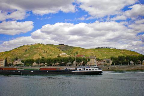 River Rhone and vineyards