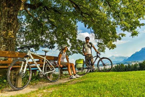 Cyclists having a break under a tree