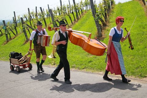 Austrian musicians in the vineyards
