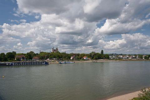 Rheinufer mit Speyerer Dom