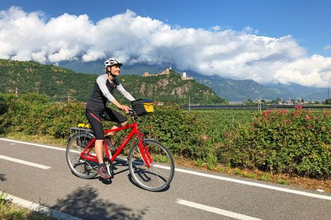 Cyclist on the Adige cycle path