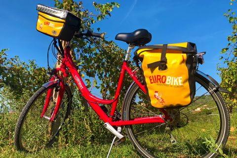 Bike in Tuscan vineyards