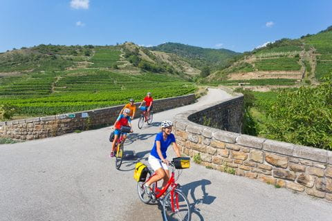 Cyclists in the region Wachau