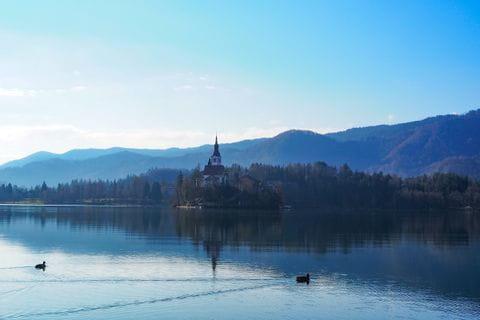 Ausblick auf Marienkirche am See Bled