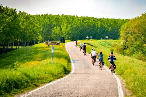 Cycling through lavish landscapes