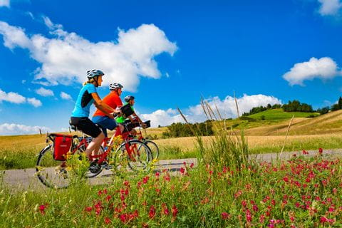 Cyclists in Tuscan idyll