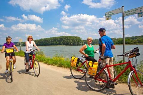 Radler auf dem Rheinradweg