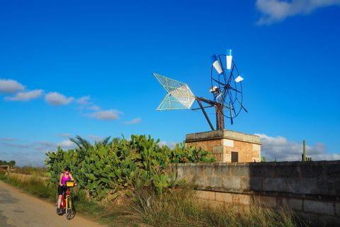 Radfahrerin am Radweg neben typischer Windmühle