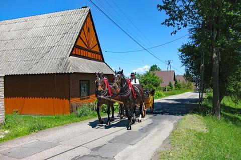 Kutsche am Dunajec Radweg