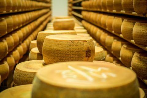 In einer Parmesanfabrik