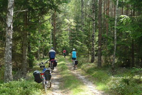 Radfahrer auf der Johannisburger Heide