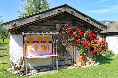 Small wooden cot with flowers