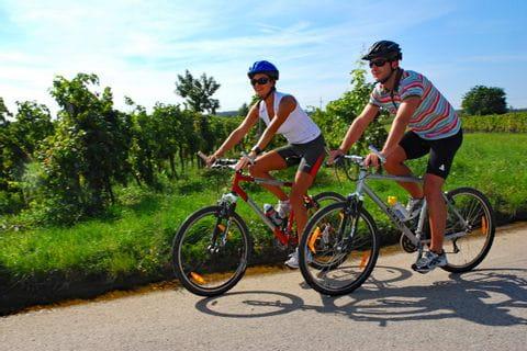 Zwei Radfahrer im Weingarten