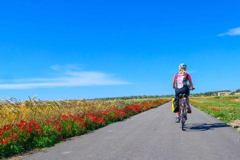 Radreise Mallorca Maria de Salud Radweg