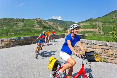 Cyclists in the region Wachau