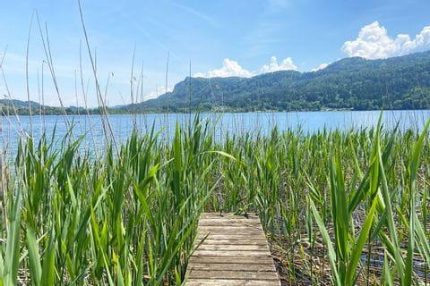 Steg durch Schilf am Faaker See