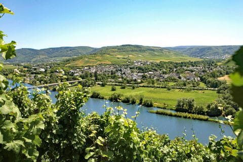 View to Mühlheim at Moselle