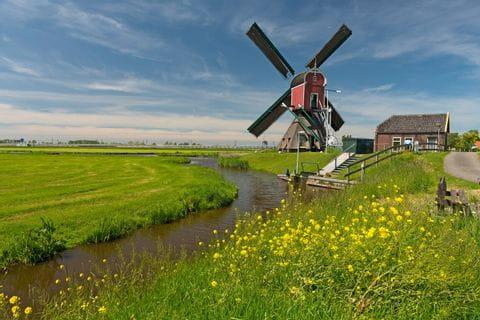Windmühlen in Südholland