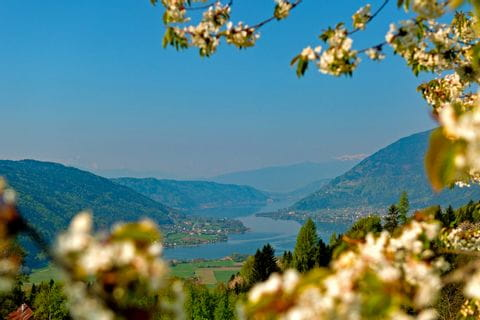 View over Lake Ossiach