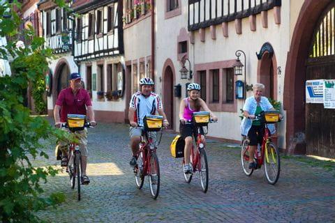 Radfahrer fahren durch Winzerort