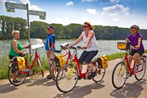 Radweg am Rhein in Richtung Speyer