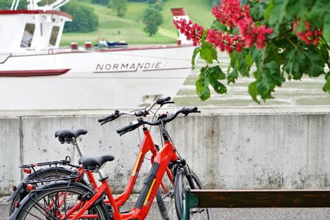 abgestelle Leihräder am Flussufer