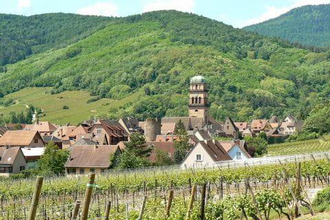 Blick über das zwischen Hügeln liegende Kaysersberg