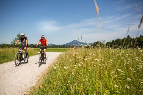 Cyclists in the wonderful nature