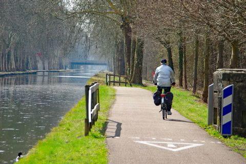 Rhein cycle path