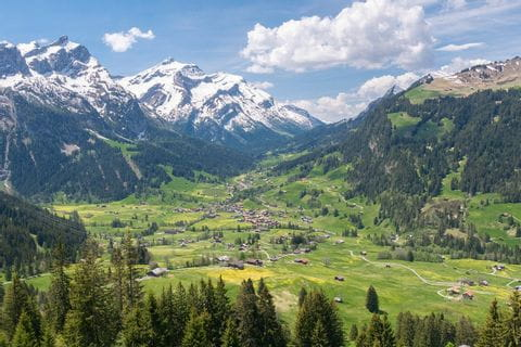 View over the Bernese Alps