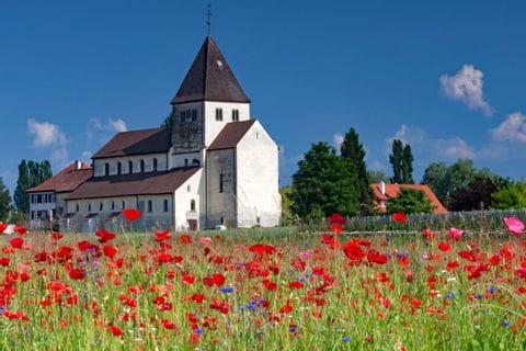 Mohnblumenwiese und kleines Schloss