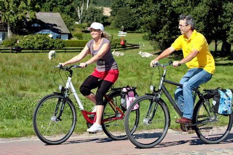 Great Rügentour cyclists on the bike path