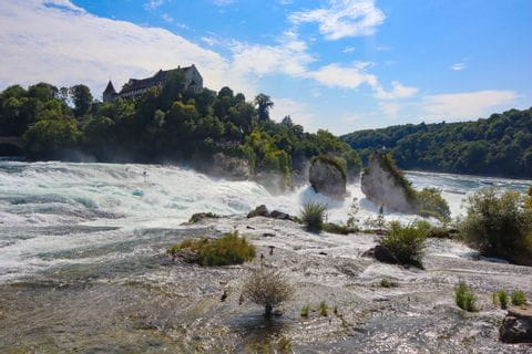 View of the Rhine Falls rock