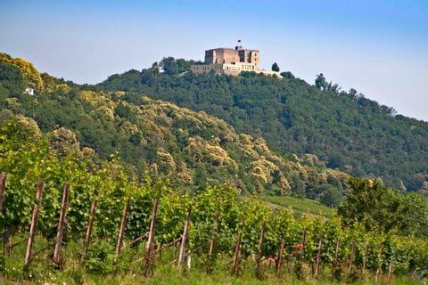 Das auf einem Hügel thronende Schloss Hambach bei der Radtour