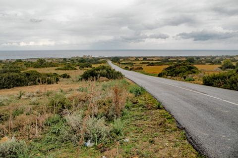 A lonesome road leading to the sea