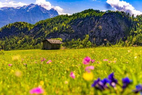 Wunderschöne Landschaft im Salzburger Land