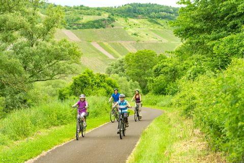 Die Familie fährt durch die Landschaft am Moselradweg