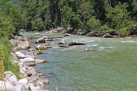 Wild channel of the river Salzach