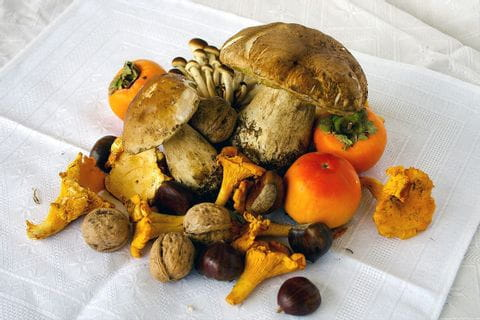 Porcini and chestnuts