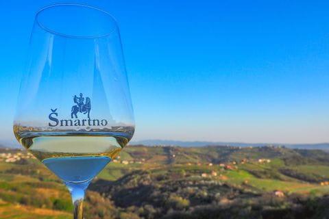 Weinglas mit Aussicht auf Brda