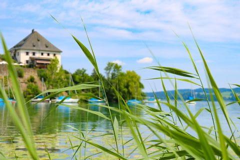 Bucht vorm Schloss Mattsee