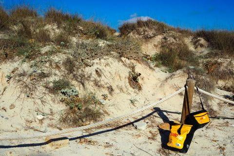 Radtaschen vor den Dünen des Naturstrands Ses Coventes