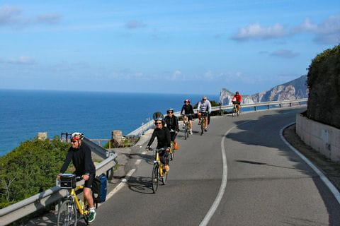 Group of cyclists on street along the coast